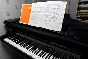 元・東洋英和女学院短期大学、日本音楽学校、日本音楽高校を経て、元・インターナショナルミュージックスクール講師、現在・「Feuillage」Classe de Musique「ピアノレッスン・フィヤージュ」主宰。